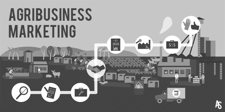 Agribusiness Marketing Thoughts